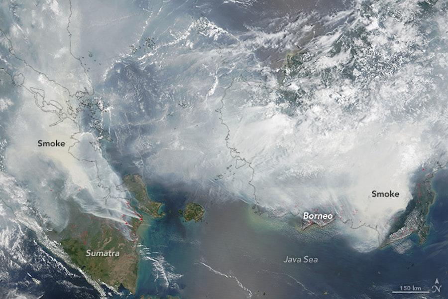 Peatland fires, sumatra and borneo