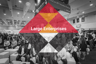 Large Enterprises