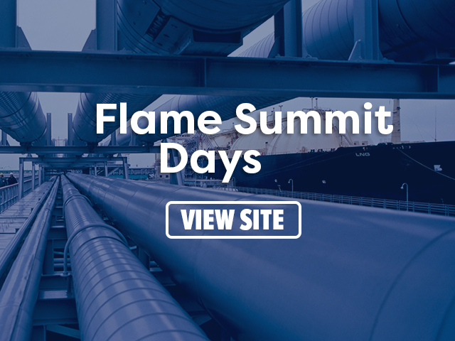 Flame Summit Days